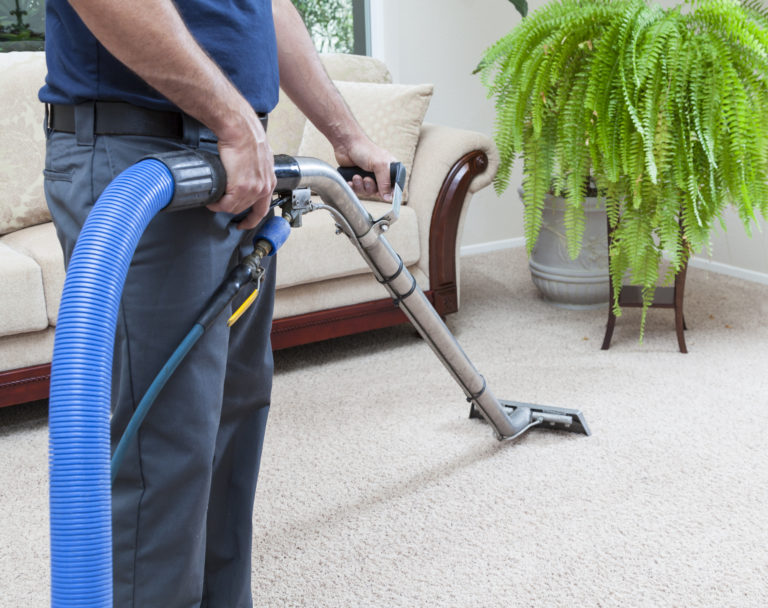 Carpet Cleaning services Christchurch
